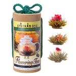 Primula Green Tea Flowers 12 Pack Gift Set
