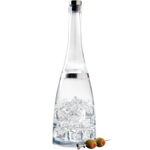 Prodyne Acrylic Cocktail Shaker and Spirit Infuser Fusion Bottle, 32 Ounce