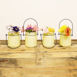 Sunday Morning Home Small Citron Glass Hobnail Jar with Hanger, Set of 4