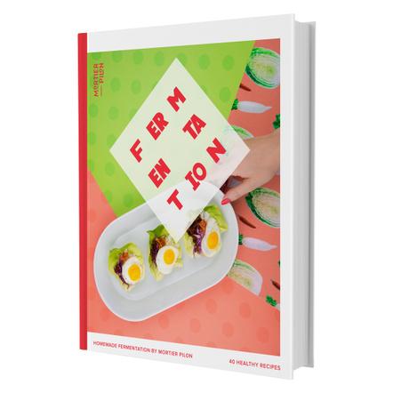 Mortier Pilon Homemade Fermentation Recipe Cookbook with 40 Healthy Recipes
