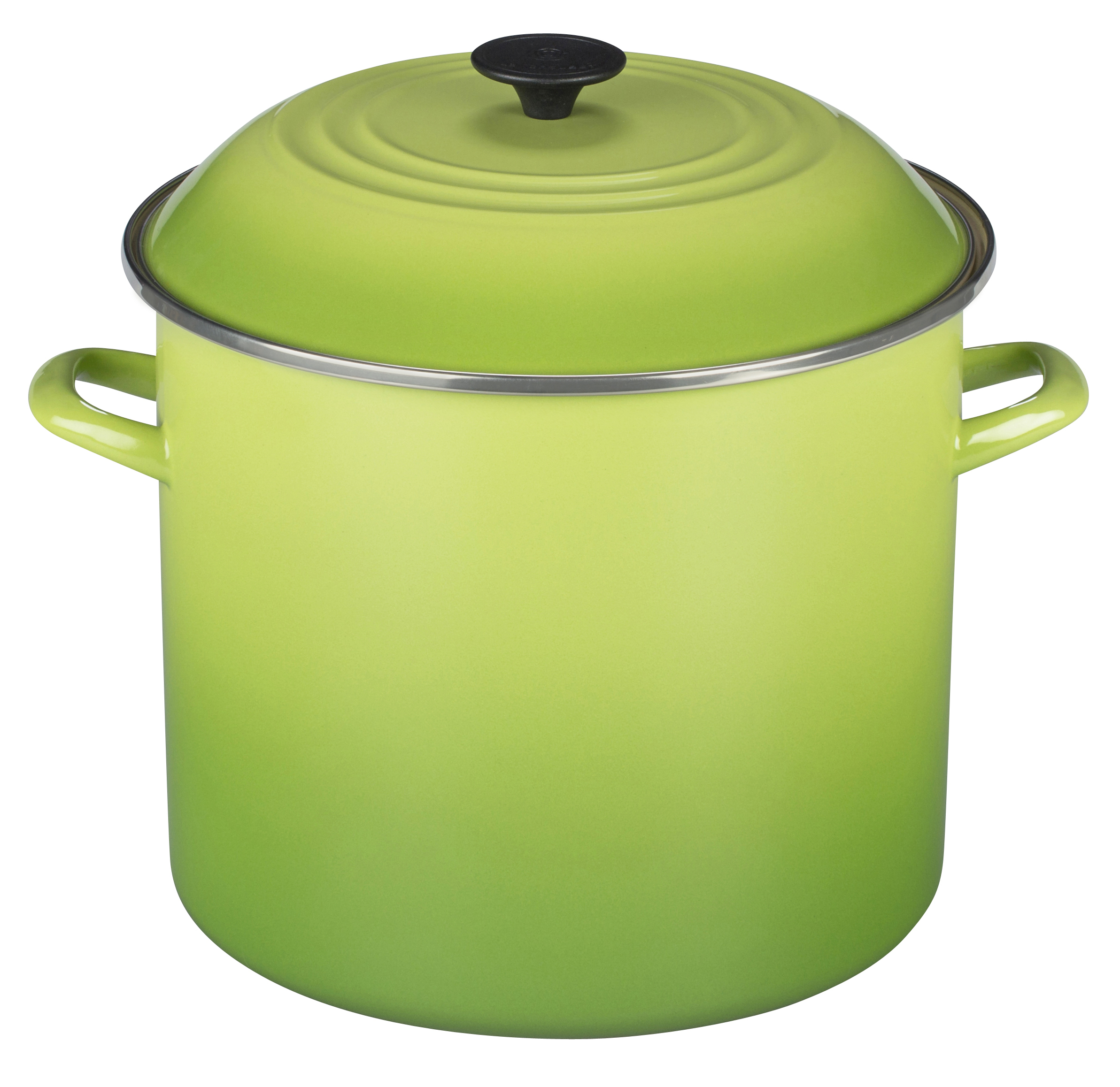 Le Creuset Palm Enamel on Steel Stockpot, 16 Quart