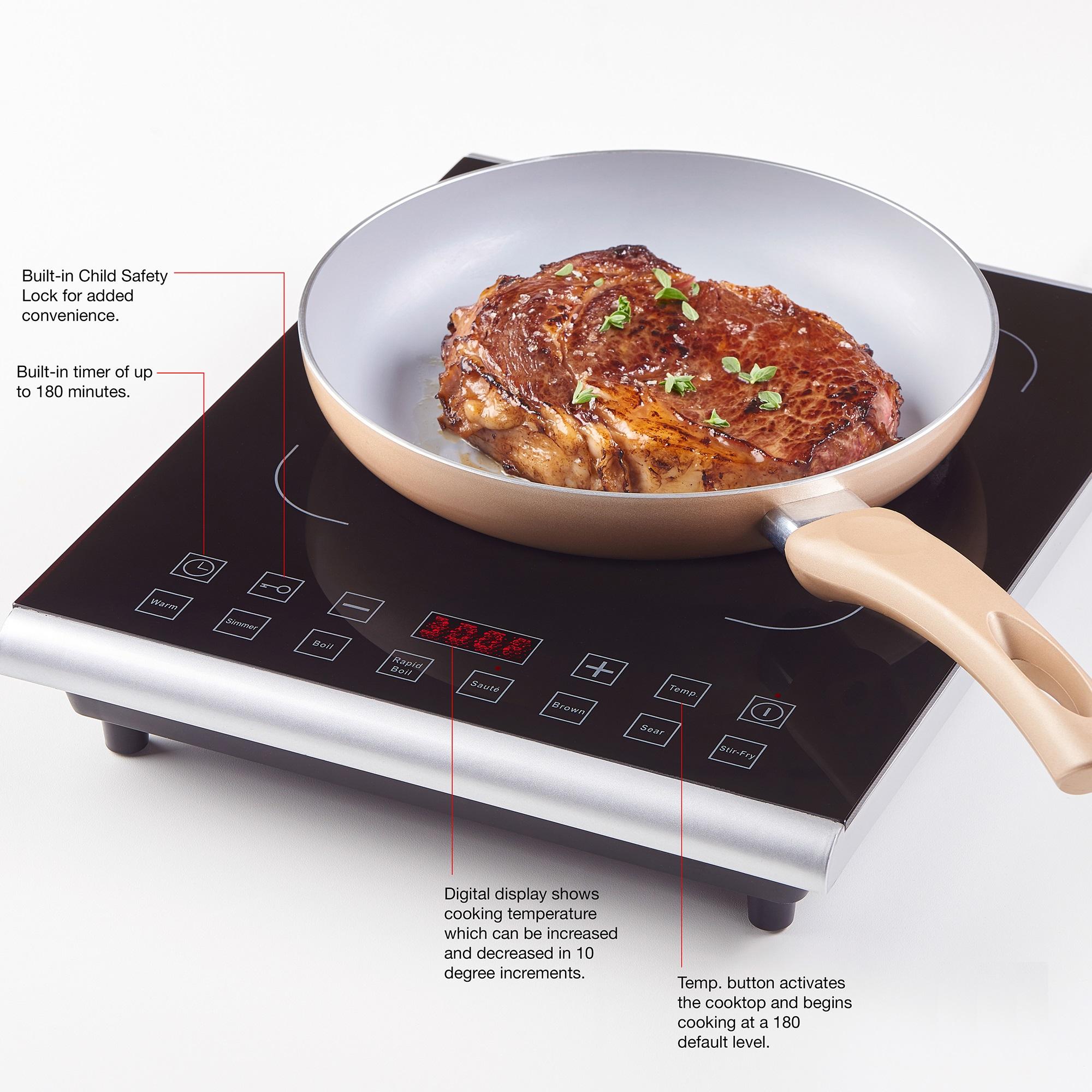 Fagor Black Induction PRO 1800-watt Induction Cooktop