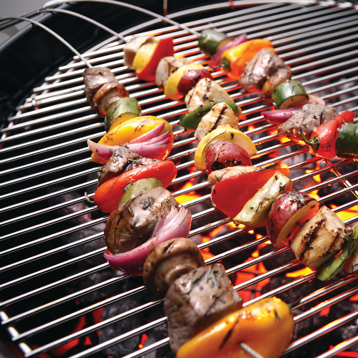 Fire Wire Stainless Steel Flexible Barbecue Skewer, Set of 2
