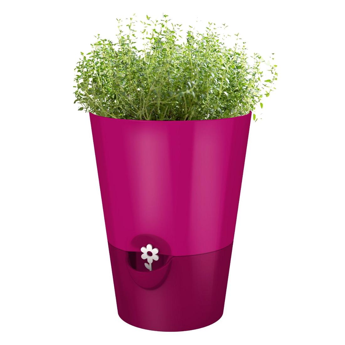 Emsa Smart Planter Pink 6.5 Inch Herb Grower