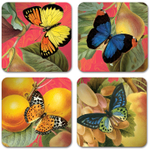 Studio Oh! Bountiful Fruit Paper Coasters, Set of 12