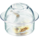 Bodum Dome Clear Garlic Keeper