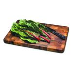 Ironwood Gourmet Acacia Large End Grain 20 x 14 Inch Prep Station Cutting Board