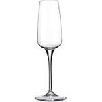 Bormioli Rocco 7.5 Ounce Aries Champagne Flute, Set of 4