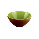 Guzzini My Fusion Kiwi Green and Brown Acrylic 9.8 Inch Bowl