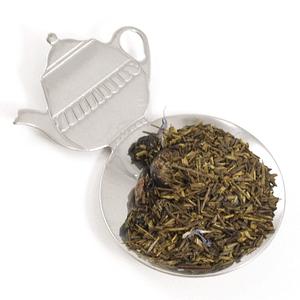 Stainless Steel Teapot Measuring Spoon