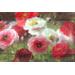 Poppy Cluster Design Small Melamine Luxury Serving Tray