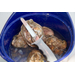 SeaScissors Stainless Steel SeaShucker Oyster Knife