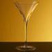 Bottega del Vino Vertex Crystal Single Martini Glass