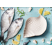 Mediterraneo Mixed Color Ceramic 8.5-Inch Conch Dish Set of 3