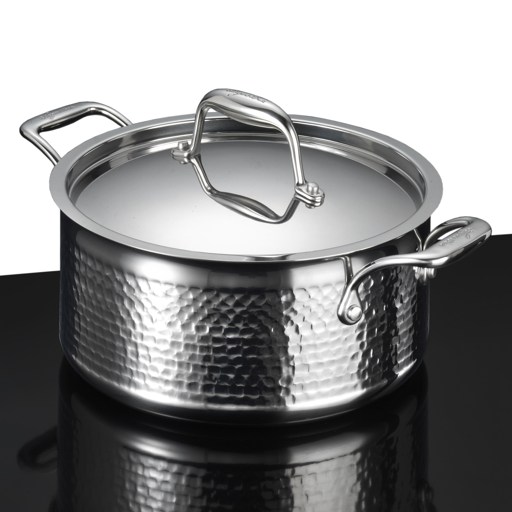 Lagostina Martellata Tri-Ply Hammered Stainless Steel 5 Quart Covered Stewpot